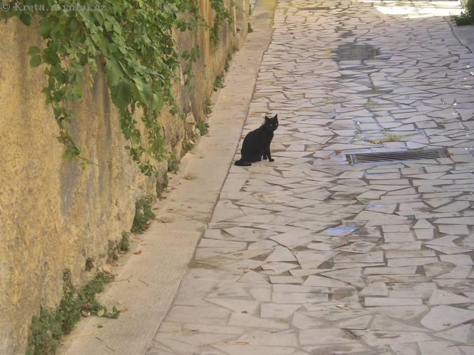 Veľká čierna mačička fotky jej prvý lesbické Trojka